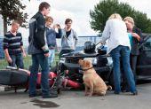 Gut versichert in den Motorrad-Sommer